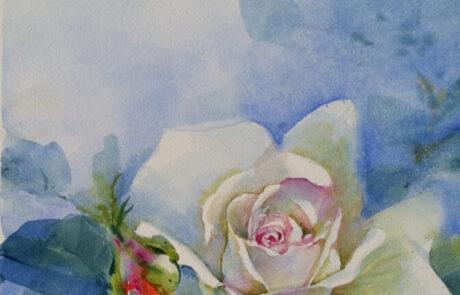 rosa 2 acquarello 30x70