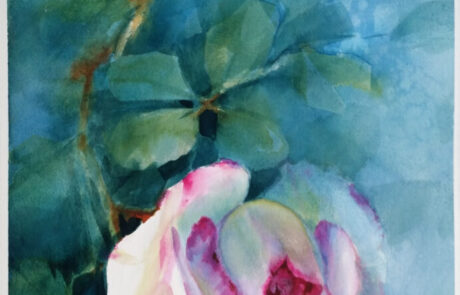 rosa 4 acquarello 30x70