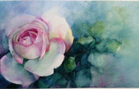 rosa 5 acquarello 70x30