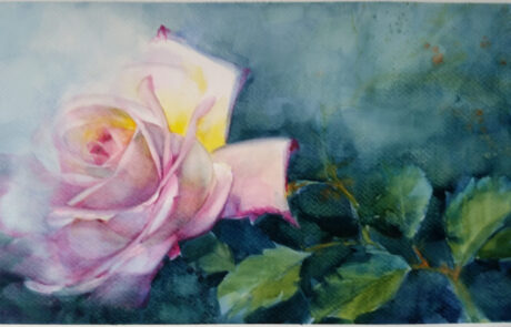 rosa 7 acquarello 30x70