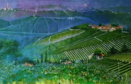 terre di vigne neive